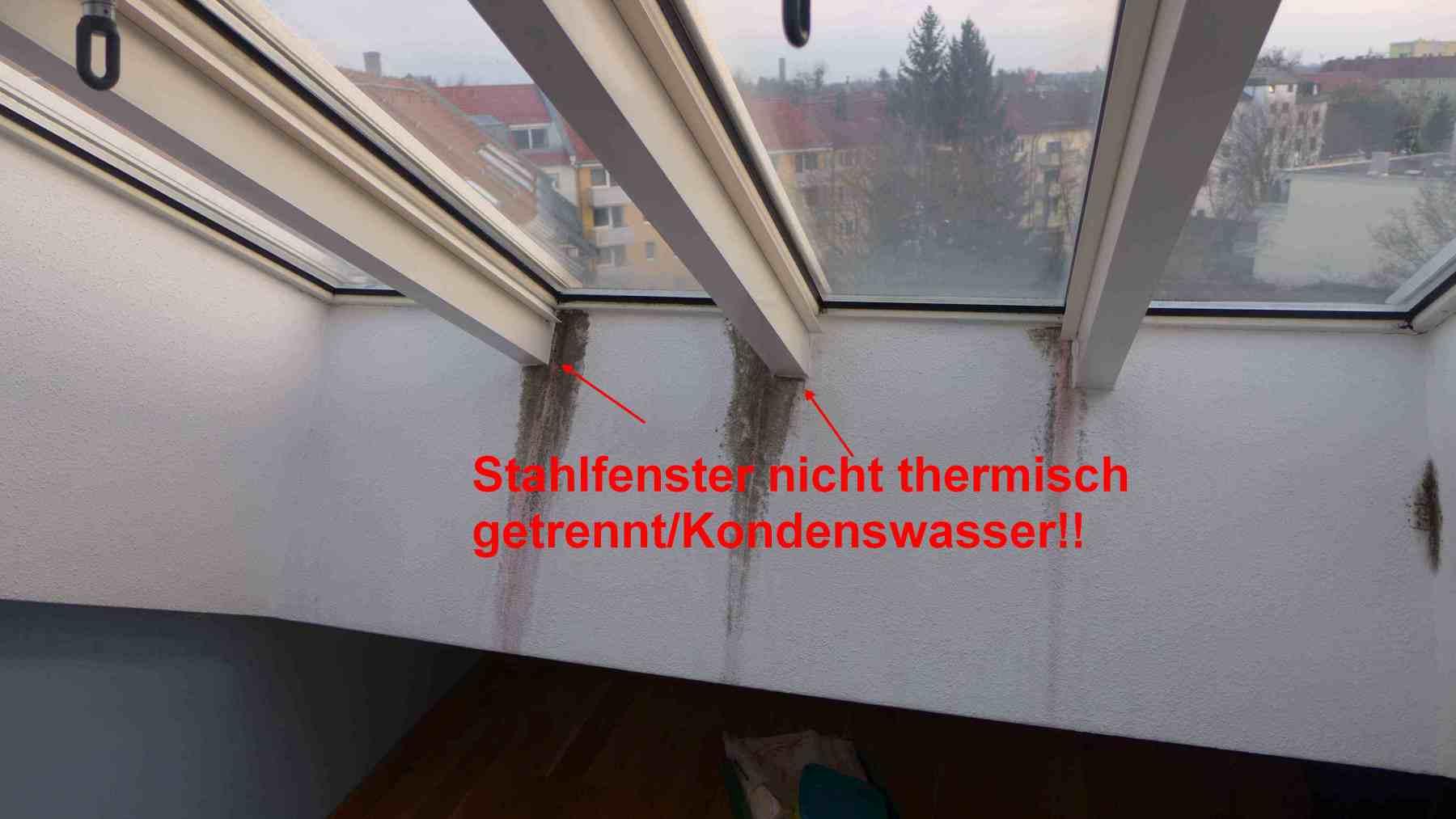 DachflÑchenfenstersanierung-Muenchen-3