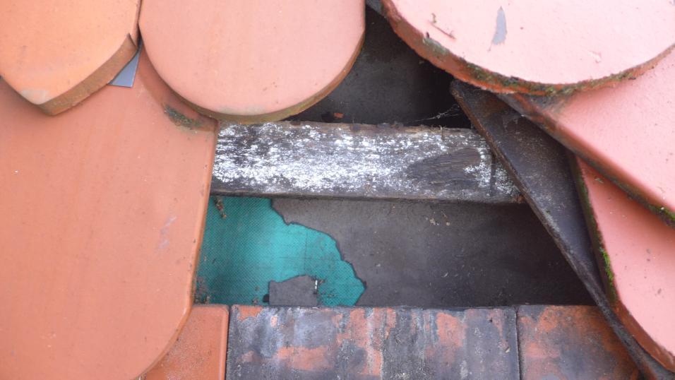 Steildachsanierung-Muenchen-KFW-3