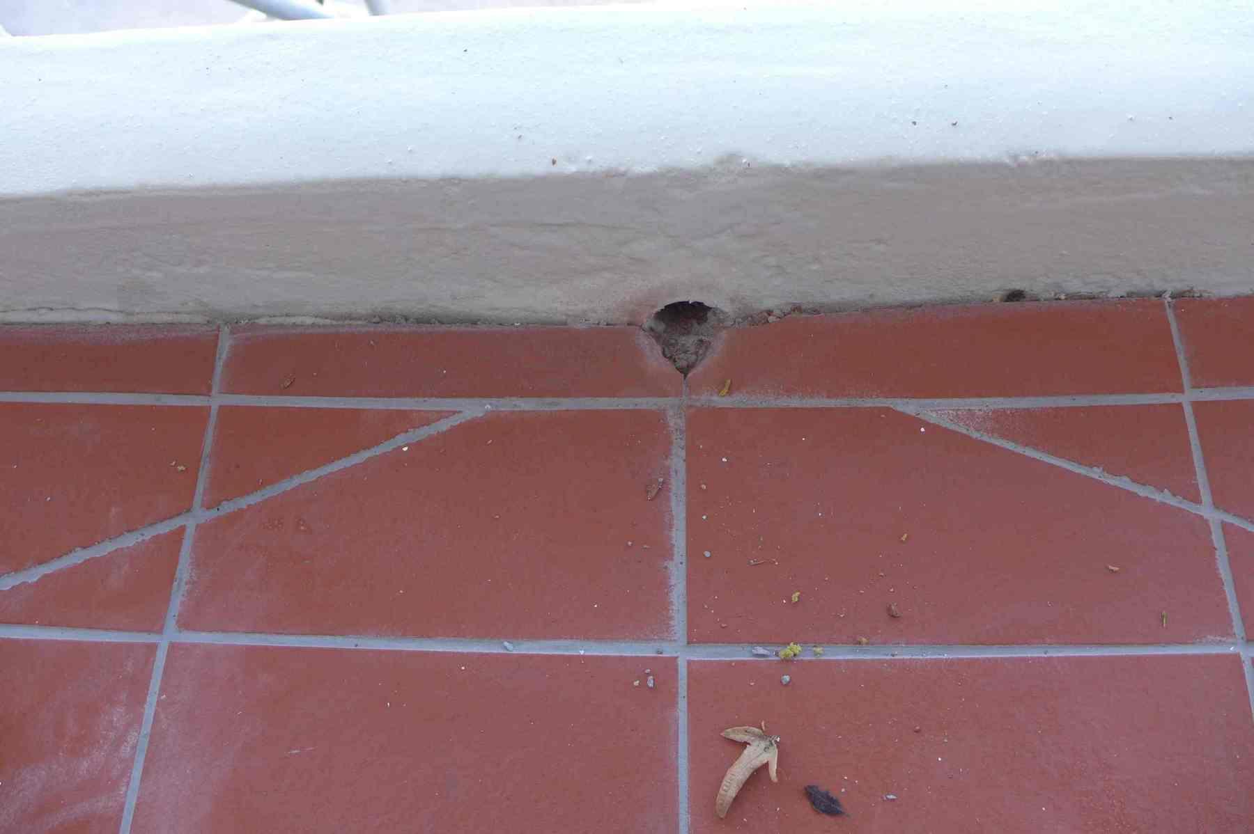 Fassadensanierung-Muenchen-31